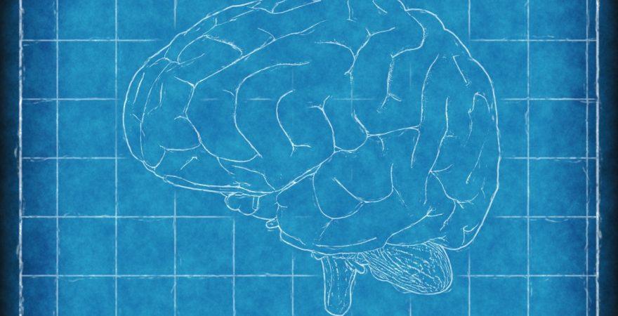 誰でもできる記憶術!記憶力が落ちたという言い訳ができなくなる?